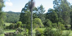 Native Australian Gardens And Pool Horse Riding Holiday NSW