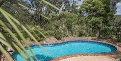 Swimming Pool Horse Riding Farm Accommodation Australia