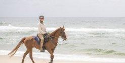 Horse Riding Holidays NSW Beaches - Southern Cross Horse Treks Australia