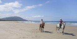 Beach Horse Riding Australia NSW - Southern Cross Horse Treks Australia