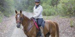 Kamal - Horse Riding Holidays For Experienced Riders Port Macquarie Hinterland NSW Australia