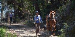 Horse Trekking Holidays For Experienced Horse Riders NSW Australia