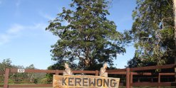 Kerewong Horse Riding Farm Holiday Adventures Mid North Coast NSW Australia