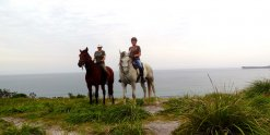 Early Morning Headland Ride With Southern Cross Horse Treks NSW Australia