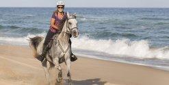 Horse Riding Holidays Beaches NSW - Horsetreks Australia