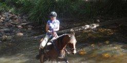 Horse Riding Fun Creek Crossing NSW Horse Tours Australia
