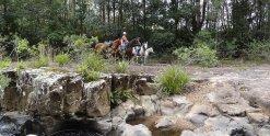 Variety of Terrains Experienced Horseback Treks Australia