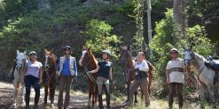 Small Group Intermediate To Advanced Riders Horse Treks NSW North Coast North Of Sydney Australia