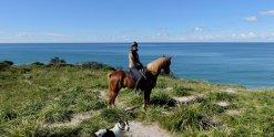 Impressive Australian NSW Scenery