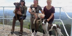 Australian Horse Riding Tours Team With Dogs