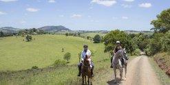 Horse Riding Holidays Port Macquarie Hinterland Comboyne NSW Australia