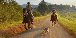 Horse Riding Through Australian Countryside NSW