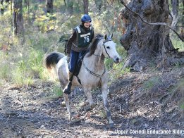Horse Treks host Kathy riding Jimmy in Endurance Ride NSW