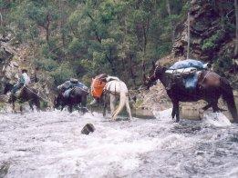 Saddlepack Horse Trekking On The Bicentennial Trail Australia