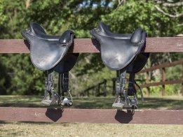 Australian Made Mackinder Endurance Saddles - For Horse And Rider Comfort