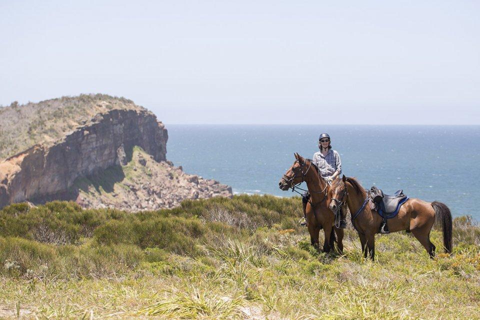 regions riding forward scholarship application