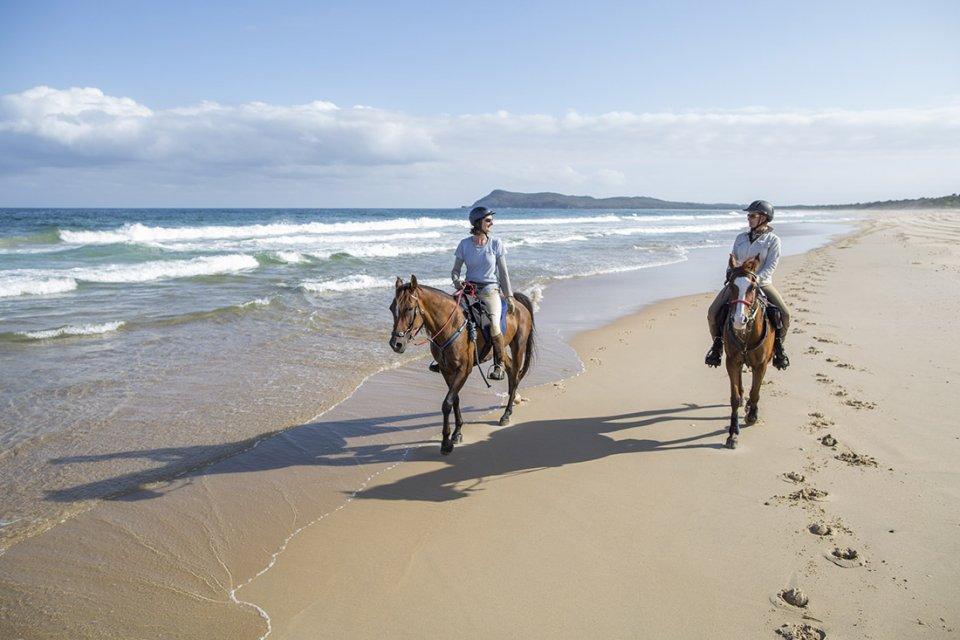 beach horse riding port macquarie region southern cross