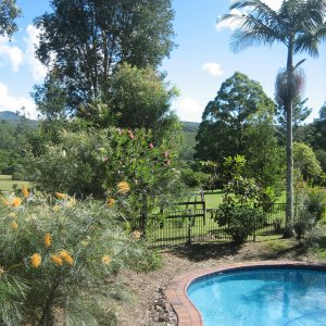 Relax On The Farm After Horse Riding In NSW Australia