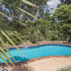 Tropical Swimming Pool - Australian Horse Riding Farm Accommodation