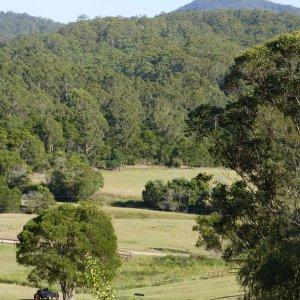 NSW Hinterland Farm View From Horse Riders' Cabin Accommodation Near Port Macquarie East Coast Australia