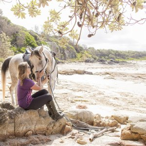 Jimmy - Horse Riding Adventure Holidays Australia Port Maquarie Beaches NSW