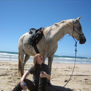 Kiya - Horse And Rider Enjoying The Beach Day Ride