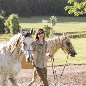 Horse Rider Info For Australian Horse Trek Holidays