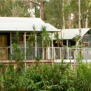Treehouses Accommodation For Beach Horse Riding Treks