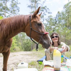 All Inclusive Horse Riding Holidays East Coast Australia North Sydney NSW