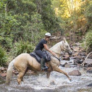 Creek Crossing Horseback Riding Tours NSW Australia