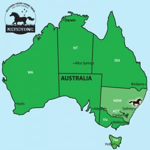 Horse Riding Holidays New South Wales Australia