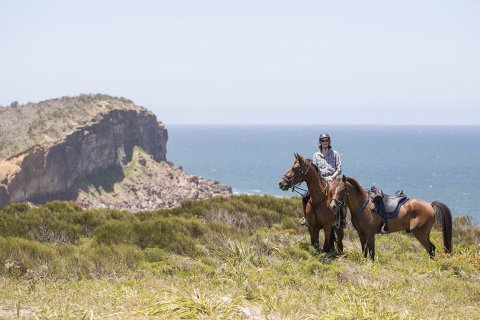 Beach Horse Ride To The Headland NSW - Horse Treks Holidays Australia