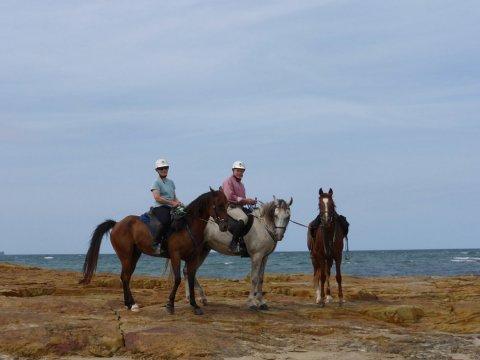 Horse Riding Holidays Port Macquarie Beaches NSW - Horse Treks Australia