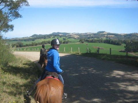 Horse Riding Tours On Comboyne Plateau NSW Australia