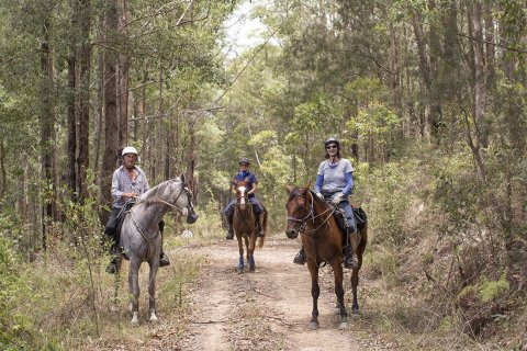 Small Group Horse Trek Holidays Australian Bush NSW