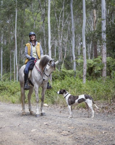 Horse Riding Port Macquarie NSW - Horse Treks Australia