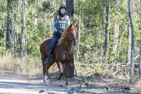 Endurance Trained Trekking Horses NSW Australia