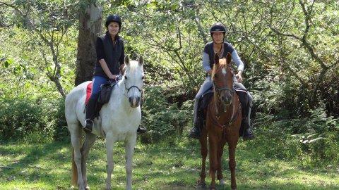 Horse Trail Riding Holiday Treks Port Macquarie Hinterland NSW Australia