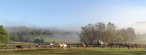 Winter Horse Riding Holidays NSW Hinterland Australia