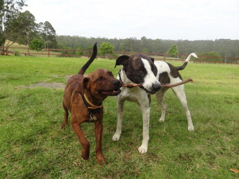 Kerewong Branch Manager And Assistant Branch Manager