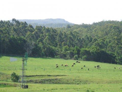 NSW Horse Riding Holiday Farm Mountain View Adventure Tours Australia