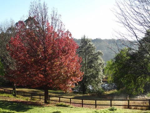 Autumn Horse Riding Holiday Property NSW Australia