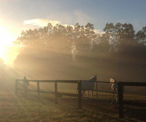 Winter Horse Riding Farm Holidays Australia