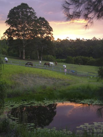 Summer Sunset Horse Riding Holidays Australia