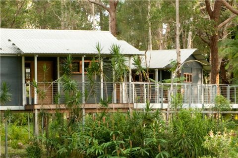 Treehouses NSW Beach Horse Treks Overnight Rider Accommodation
