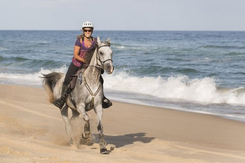 Horse Riding Holidays Beaches NSW - Horsetreks Australia