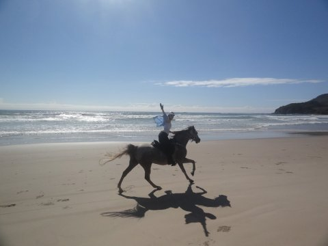 Happy Horse Rider Wave Cantering On The Beach Ride