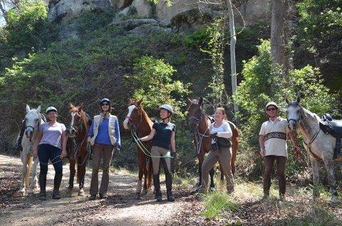 Small Group Intermediate To Advanced Riders Horse Treks NSW North Coast North Of Sydney Australia