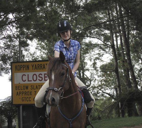 Horse Trek Adventure Tours NSW North Coast, North Of Sydney Australia