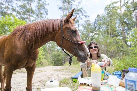 All Inclusive Horse Riding Holidays East Coast Australia North Of Sydney NSW